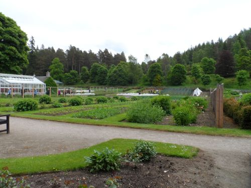 Queen's kitchen garden